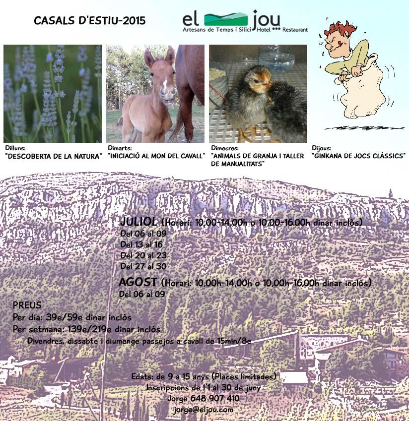 Cartell psd català copy